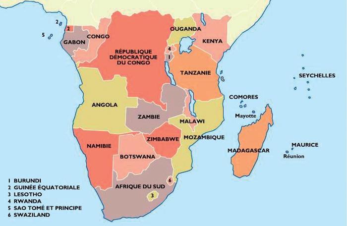 Ces Tunisiens Au Cœur De L Afrique Du Sud