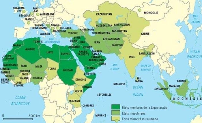television dans le monde arabe