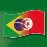 Appui à la réforme de la Protection Sociale en Tunisie: Mission d'une délégation brésilienne en Tunisie