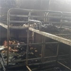 5e incendie dans un internat en un mois, la thèse d